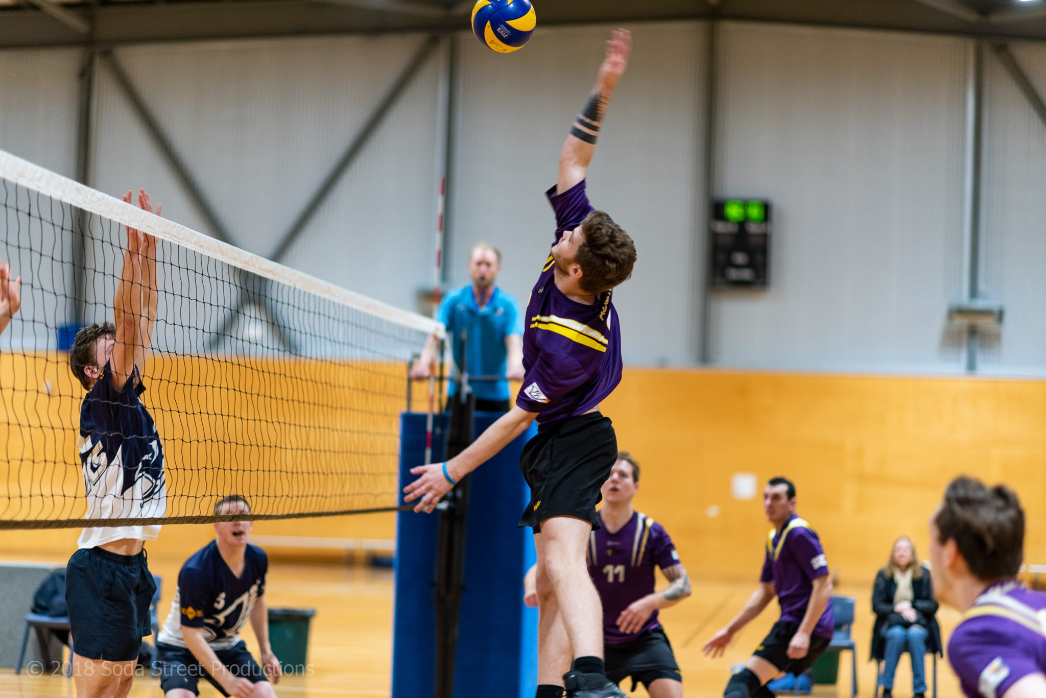 Austral Phoenix Volleyball Club For All Ages And Abilities